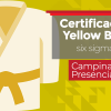 Yellow Belt | Presencial Campinas