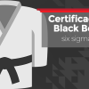 Certificação Lean Six Sigma Black Belt