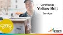 Certificação Lean Seis Sigma Yellow Belt - Serviços
