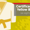 Certificação Lean Seis Sigma Yellow Belt - Geral